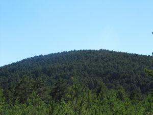 Patrimonio natural de Orihuela del Tremedal