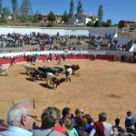 Orihuela invierte 17.000 euros en pintar y mejorar la seguridad en la plaza de toros.